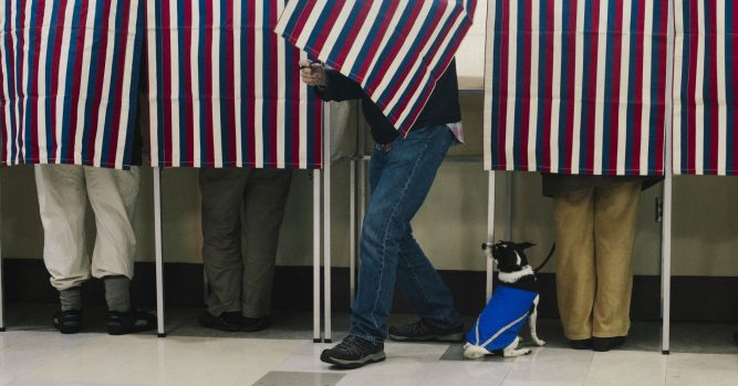 Here are the key election races Wall Street is watching as early indicators 3