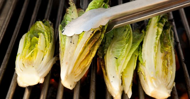 Arizona farmers were 'sweating bullets,' waiting for romaine advisory to end 5